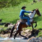 man on horseback leaving creek