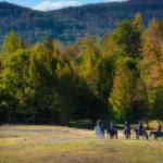 group horseback riding in fall