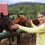 young girl patting horses at Horseshoe Canyon Ranch