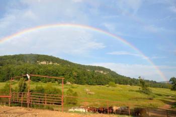 rainbow over horses