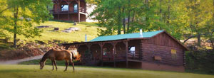 Horseshoe Canyon Ranch Cozy Log Style Cabins